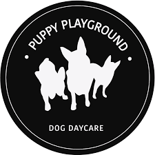 Puppy Play Ground